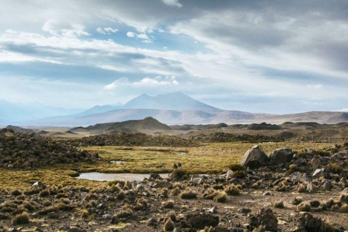 BarfussUmDieWelt-Polare-Schritt-Chile-Parinacotta-Ausblick-Berge-Alpaka-barfuß