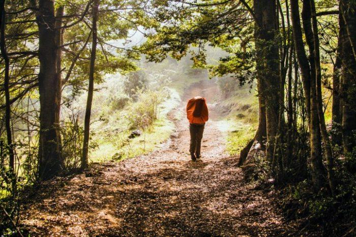 BarfussUmDieWelt-JonathanvonRosenberg-KataleyavonRosenberg-Unbeschwerte-Schritt-Chile-Villarrica-Cani-Nationalpark-barfuß