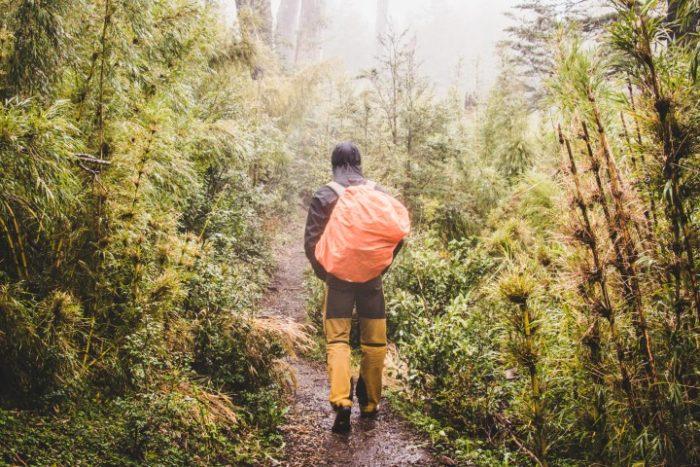 BarfussUmDieWelt-JonathanvonRosenberg-Verantwortliche-Schritt-Chile-Villarrica-Cani-Nationalpark-Wanderung-Bambus-barfuß