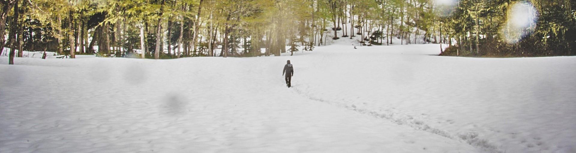 BarfussUmDieWelt-JonathanvonRosenberg-Verantwortliche-Schritt-Chile-Villarrica-Cani-Nationalpark-Wanderung-Schnee-Fußspur-barfuß-Header